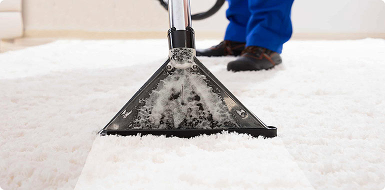 Carpet Cleaning serving Lemont and Chicago suburbs
